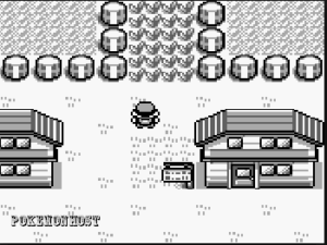 the beginning scene in pokemon blue version